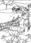 Dibujo para colorear 1b pastores