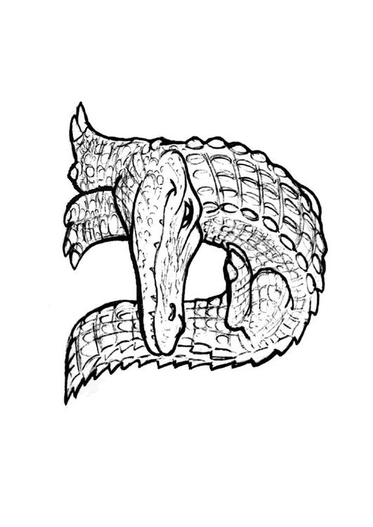 Dibujo para colorear a-alligator - Img 24829