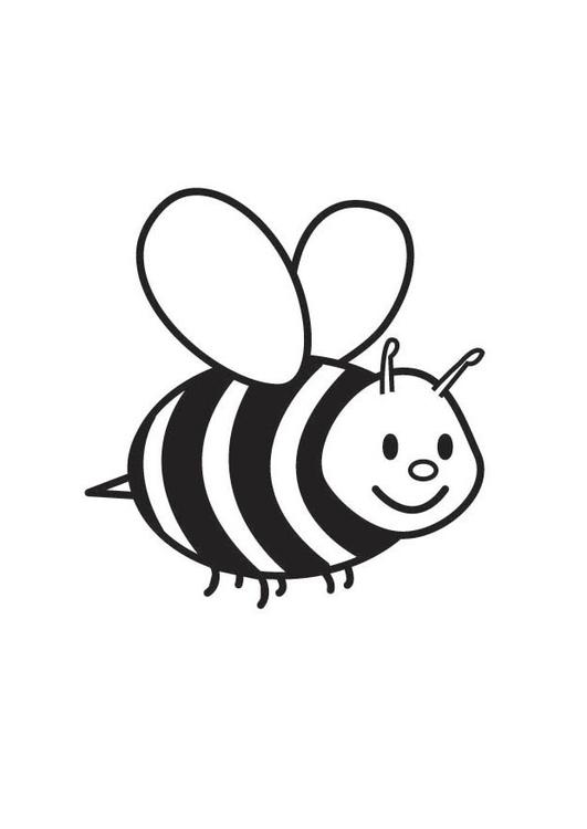 Dibujo para colorear abeja   Img 17703