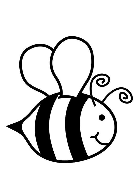 Dibujo para colorear abeja  Img 30016