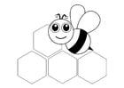 Dibujo para colorear abeja - parte delantera