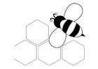 Dibujo para colorear abeja - parte posterior