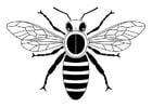 Dibujo para colorear abeja