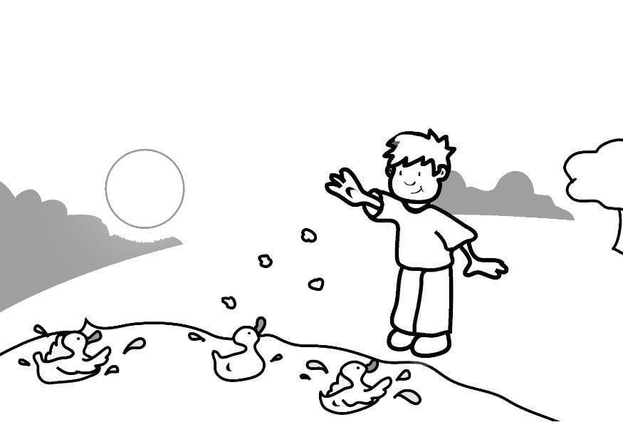 Dibujos De Patos Para Colorear Para Niños: Dibujo Para Colorear Alimentar A Los Patos