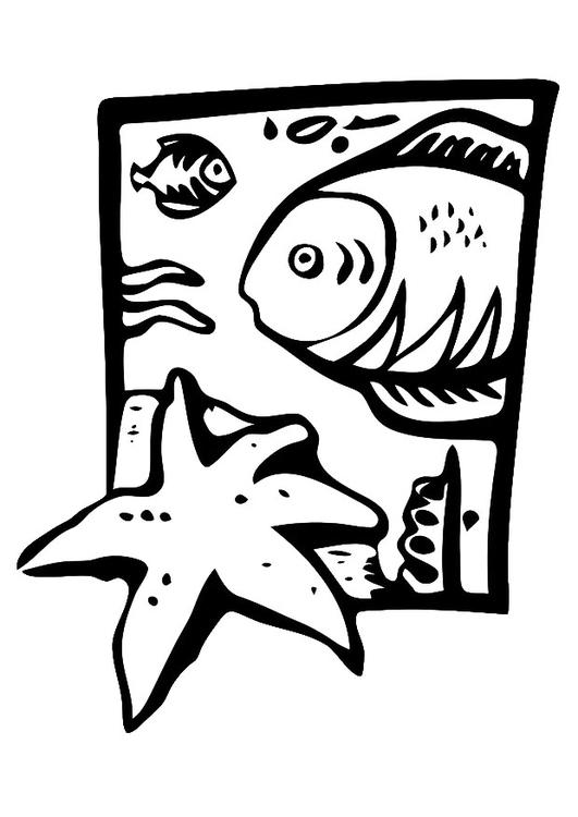 Dibujo para colorear animales marinos img 20679 for Disegni marini da stampare