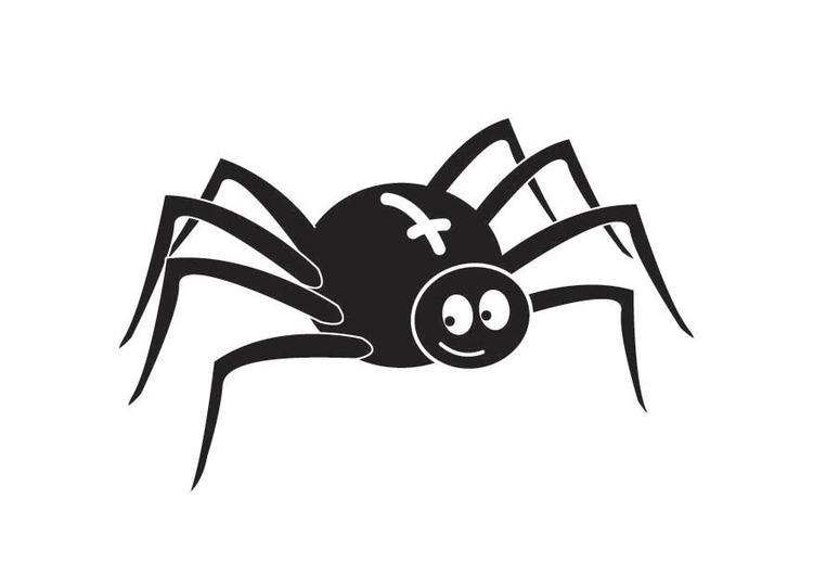 Dibujo para colorear araña - Img 18017