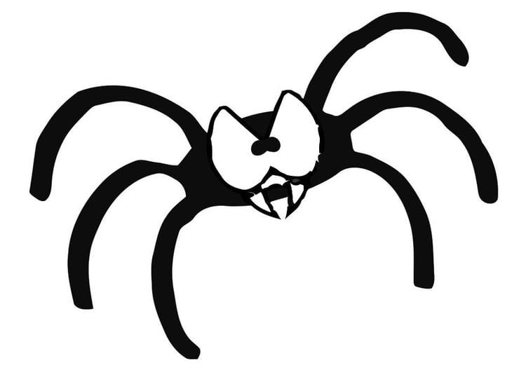 Dibujo Para Colorear Araña Img 19633