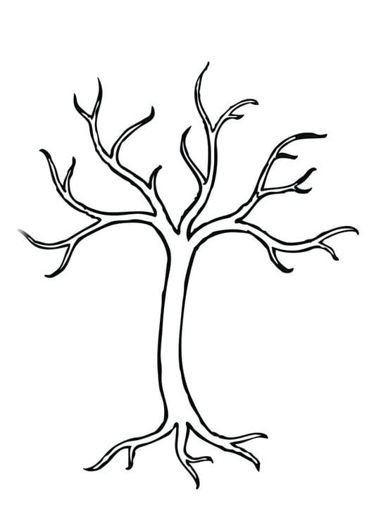 Dibujo para colorear árbol - Img 28966