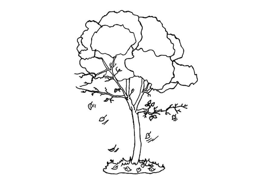 Dibujo Para Colorear árbol En Otoño Dibujos Para Imprimir