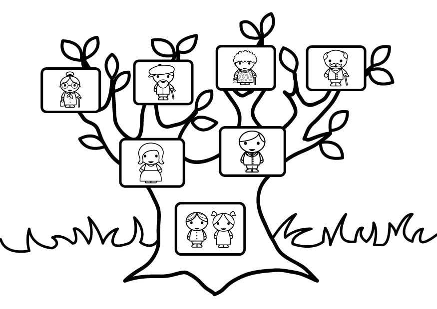 Dibujo para colorear rbol geneal gico img 26873 for Nombres de arboles en ingles
