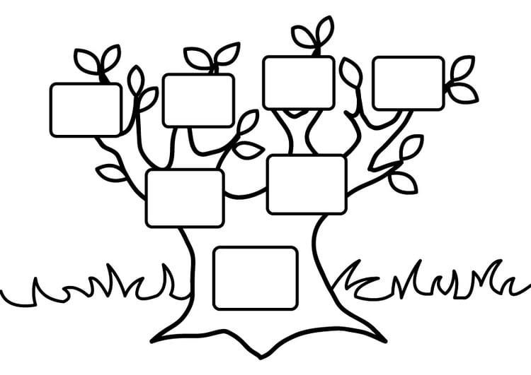 Dibujo para colorear árbol genealógico vacío - Img 26875