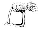 Dibujo para colorear avestruz con la cabeza en la arena