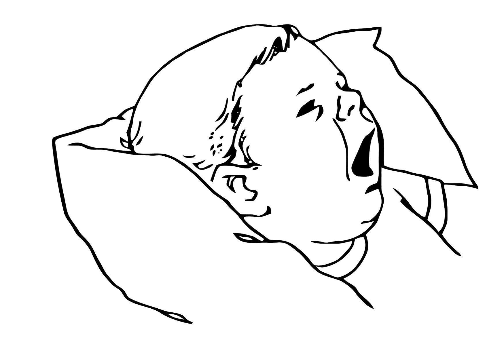 Dibujo para colorear Bebé - Img 11864