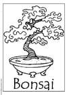 Dibujo para colorear Bonsai