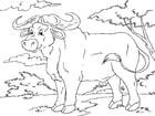 Dibujo para colorear búfalo