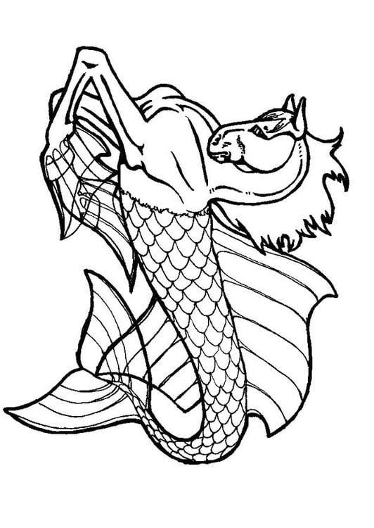 Dibujo para colorear Caballito de mar - Img 7129