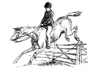 Dibujo para colorear caballo con jinete