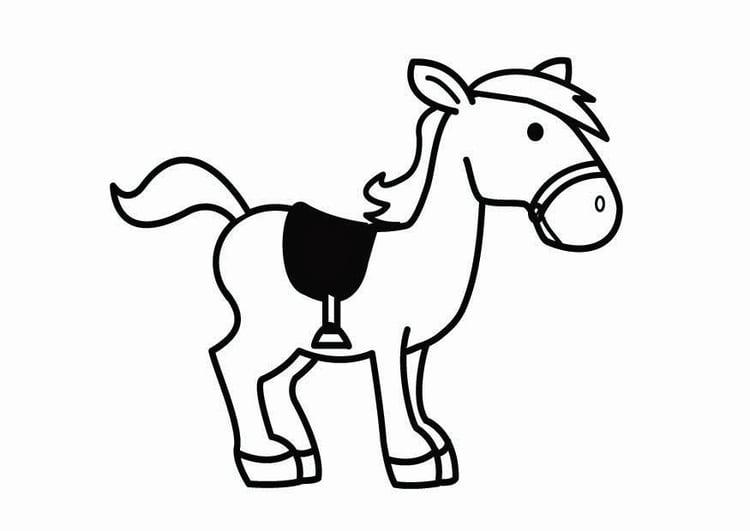 Dibujo para colorear caballo de San Nicolás - Img 26707