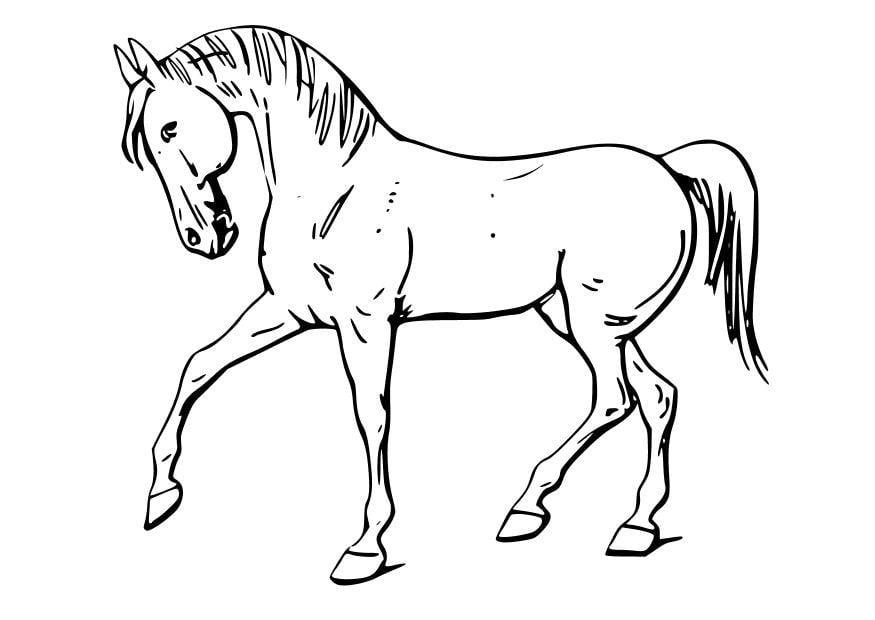 Dibujo para colorear Caballo - Img 10346