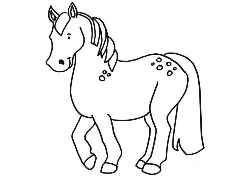 Dibujo para colorear caballo  Img 18664