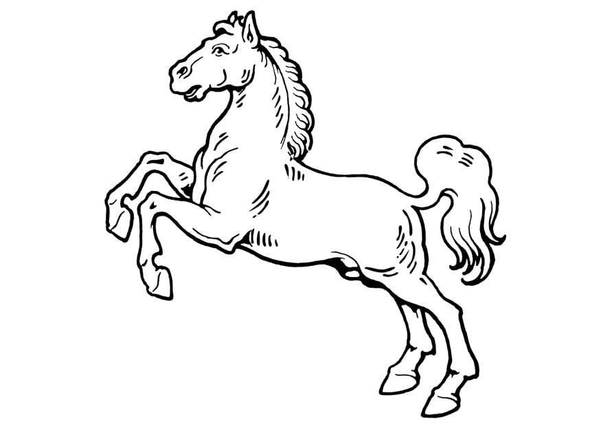 Dibujo para colorear caballo - Img 19310