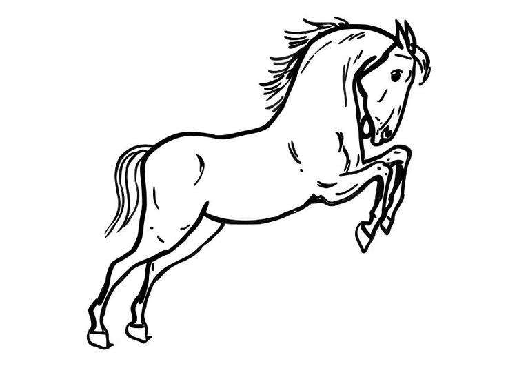 Dibujo para colorear Caballo saltando - Img 10362