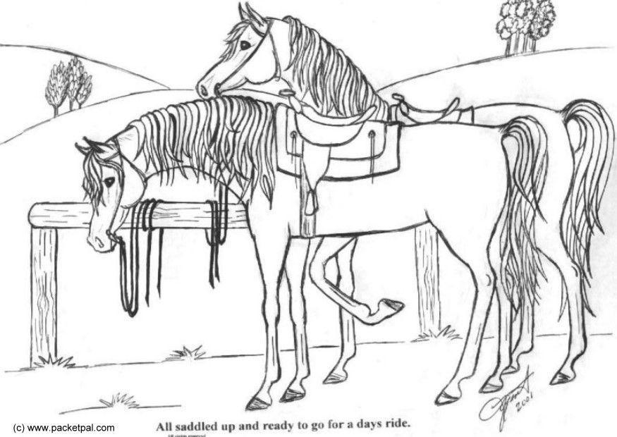 Dibujo para colorear Caballos ensillados - Img 6088