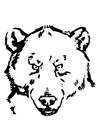 Dibujo para colorear cabeza de oso