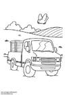 Dibujo para colorear Camión pick-up