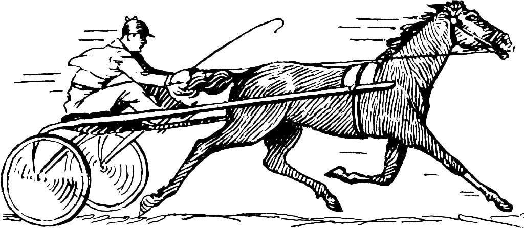 Kleurplaat Paarden Western Dibujo Para Colorear Carrera De Caballos Dibujos Para