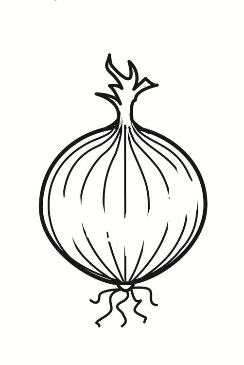 Dibujo para colorear cebolla - Img 23236