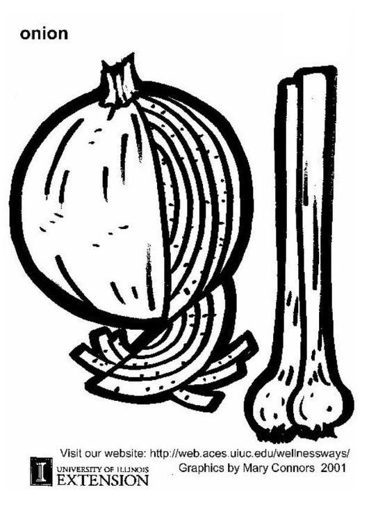 Dibujo para colorear Cebolla  Img 5871