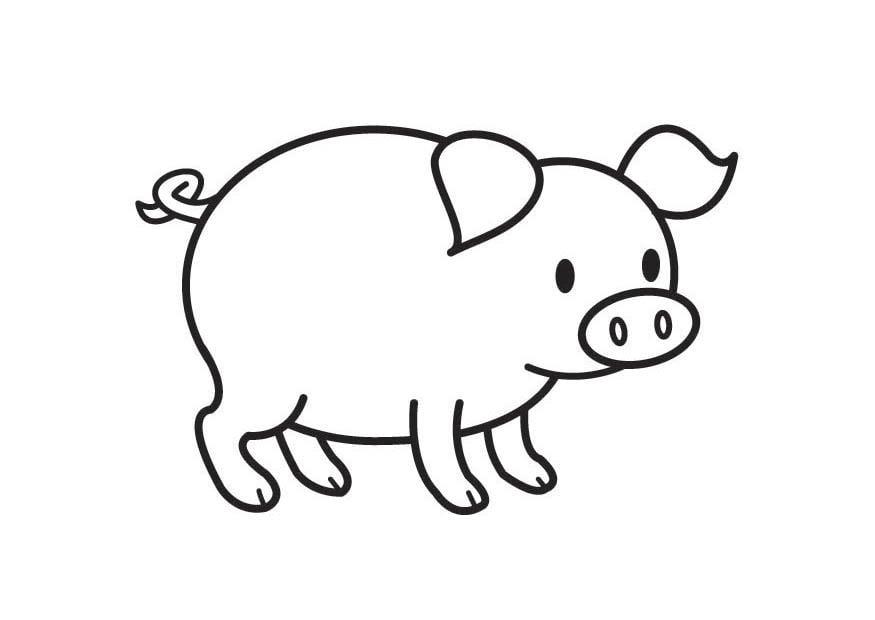 Dibujo para colorear cerdo   Img 17789