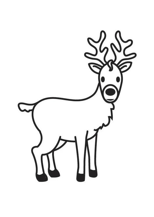 Dibujo para colorear ciervo - Img 17870