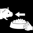 Dibujo para colorear Cobaya - dar comida