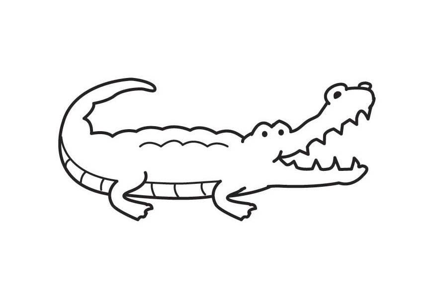 Dibujo para colorear cocodrilo - Img 17575