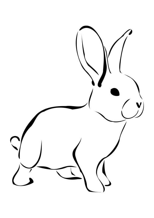 dibujo para colorear conejo