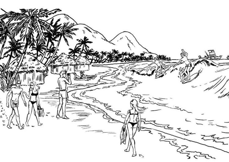 Dibujo Para Colorear Costa Playa Img 8045
