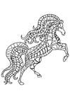 Dibujo para colorear cría de caballo