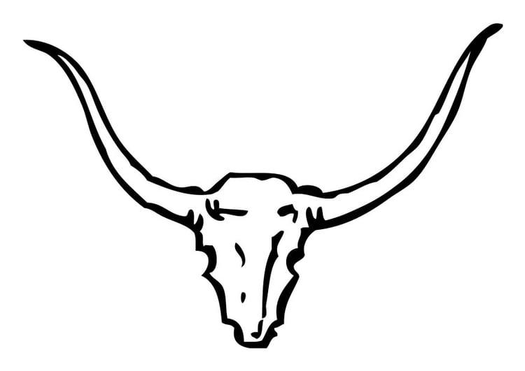 Dibujo para colorear cráneo de toro - Dibujos Para Imprimir Gratis