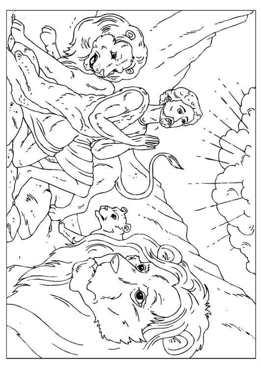 Paginas Para Colorear De Leones Para Para Para L Dibujos Para