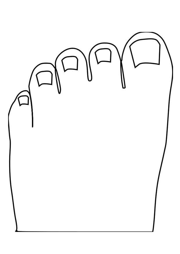 dibujo para colorear dedos de los pies
