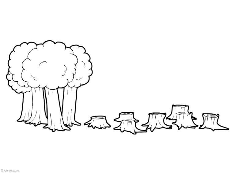 Dibujos De Arboles Coloreados: Dibujo Para Colorear Deforestación