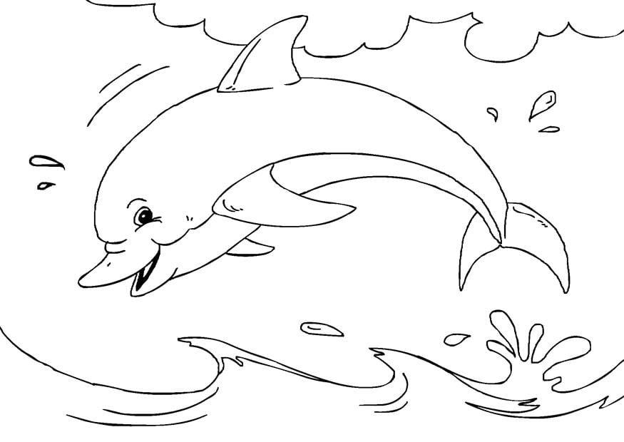 Dibujos Para Colorear Las Amigas Con El Delfin: Dibujo Para Colorear Delfín