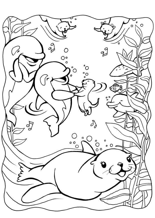 Dibujo para colorear Delfines con