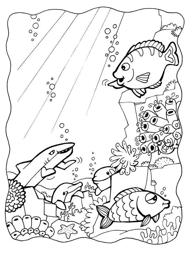Onderwater Kleurplaat Dibujo Para Colorear Delfines Con Peces Img 7084 Images
