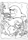 Dibujo para colorear Delfines