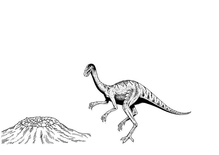 Dibujo para colorear Dinosaurio en nido - Img 9098