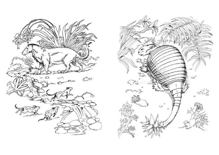 58 Dinosaurios Para Colorear Y Pintar Descargar E: Dibujo Para Colorear Dinosaurio Y Depredador