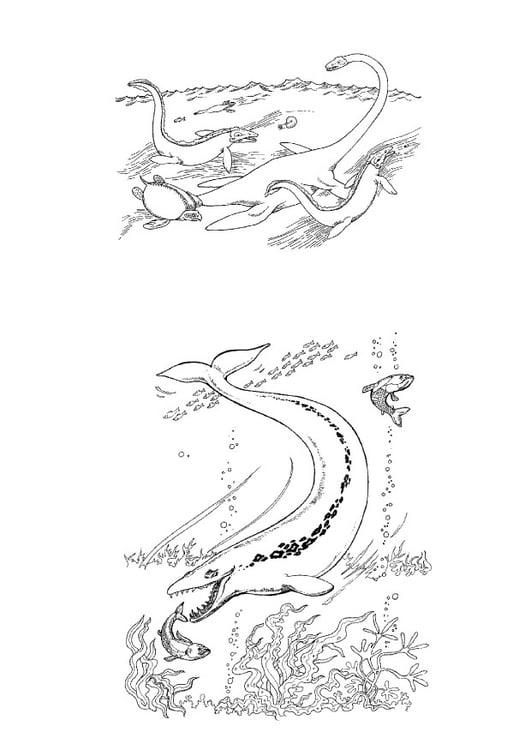 Dibujo Para Colorear Dinosaurios Marinos Dibujos Para Imprimir Gratis Img 9108 No eran considerados dinosaurios sino reptiles marinos, primos de los lagartos y las serpientes, que dependían del aire para respirar pero no estaban dotados de branquias. dibujo para colorear dinosaurios